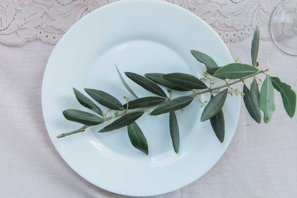 Olive branch on plate