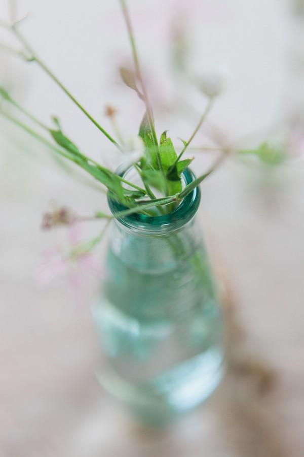 Small vase of greenery