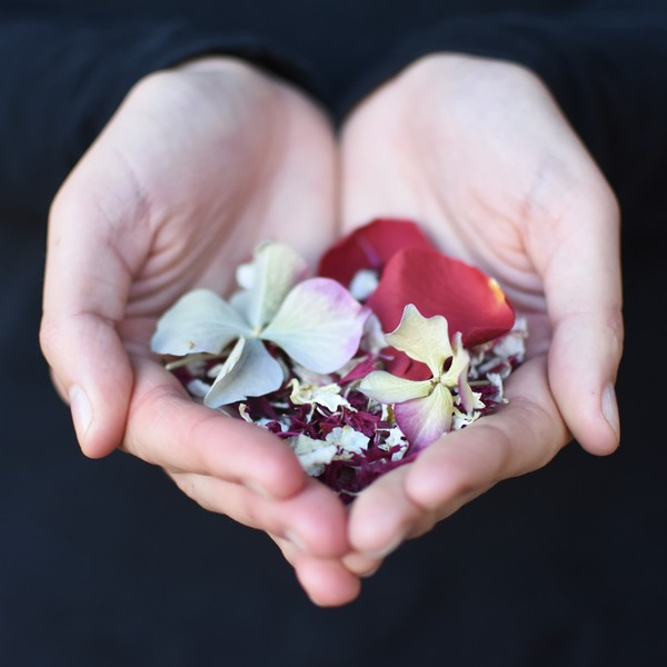 Christmas Confetti Mix from Shropshire Petals