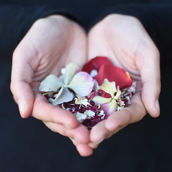 Christmas Confetti Mix from Shropshire Petals