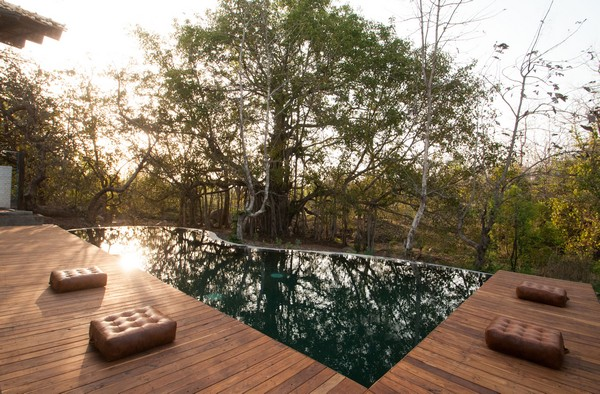 Swimming Pool at Jamtara Wilderness Camp, India
