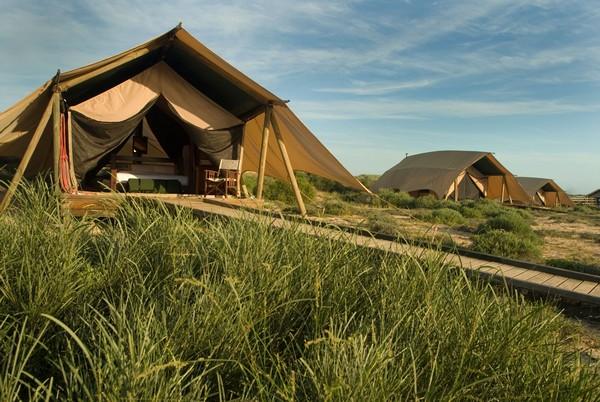 Tent at Sal Salis, Australia