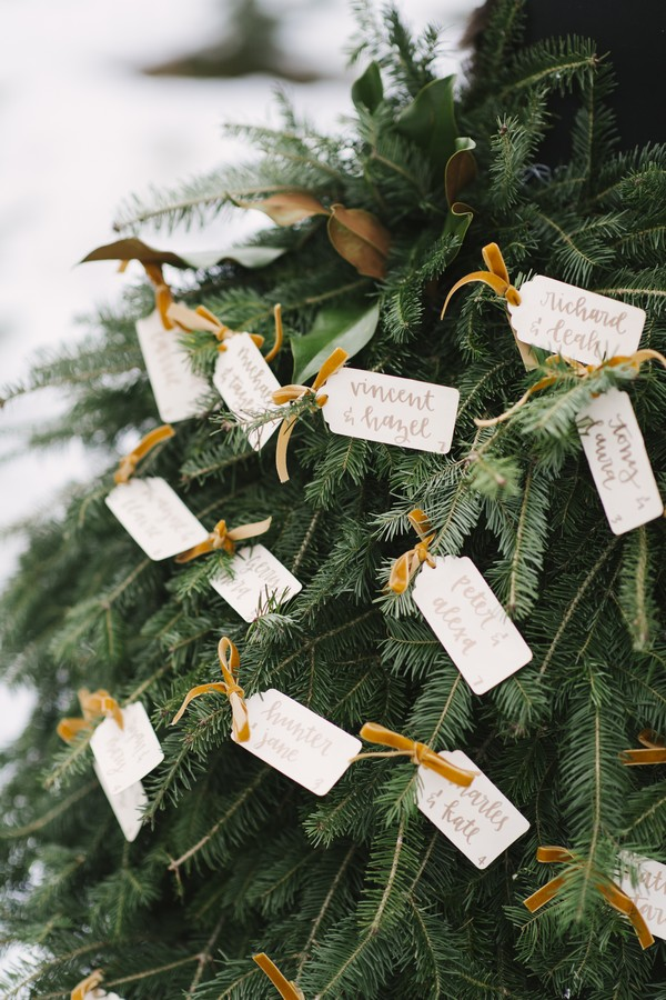 Escort cards attached to Christmas tree branches