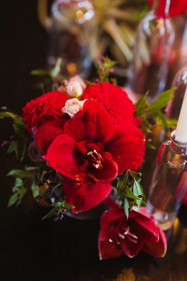 Amaryllis Red Winter Wedding Flower