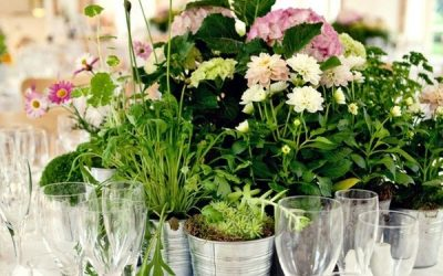 Eco-Friendly Wedding Flowers