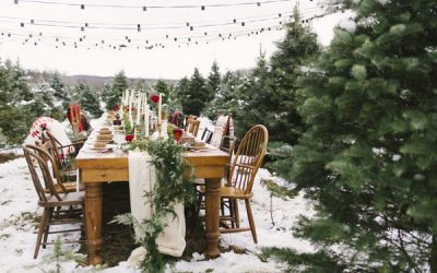 Winter Wedding Styling on a Christmas Tree Farm