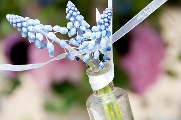 Muscari Flowers in Bottle