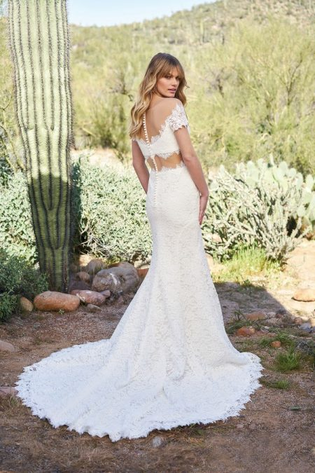 Back of 6519 Wedding Dress from the Lillian West Spring/Summer 2018 Bridal Collection