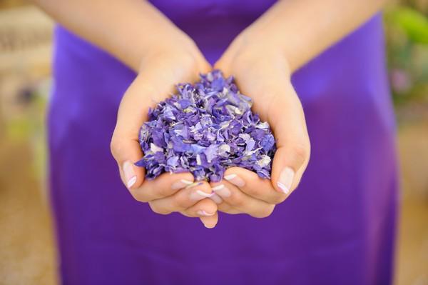 Hands Holding Amethyst Confetti Petals