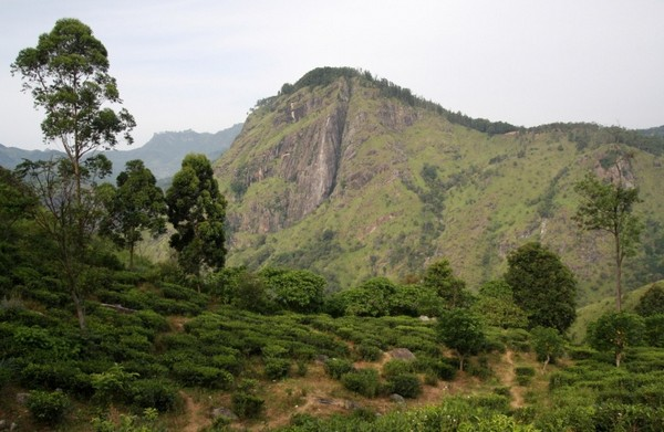 Ella Rock, Sri Lanka