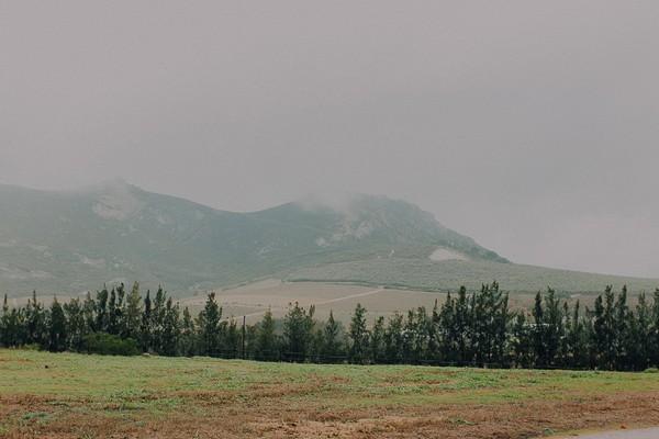 Scenery around Vondeling vineyard