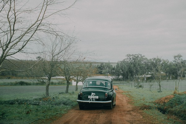Wedding car driving through Vondeling vineyard