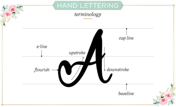 Hand Lettering Terminology