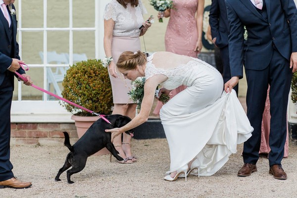 Bride stroking dog