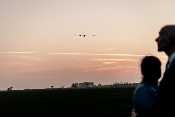 Bride and groom looking at sunset in field