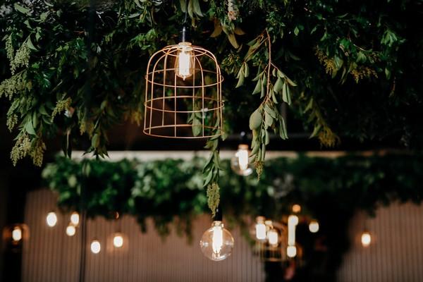 Lights around hanging foliage