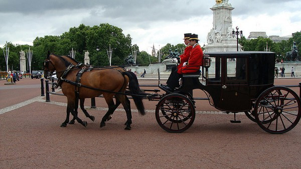 Horse-Drawn Brougham Carriage