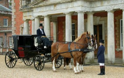 Hiring Horse and Carriage Wedding Transport