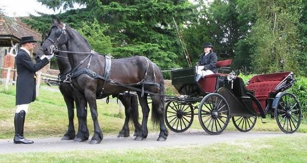 Horse-Drawn Vis a Vis Carriage