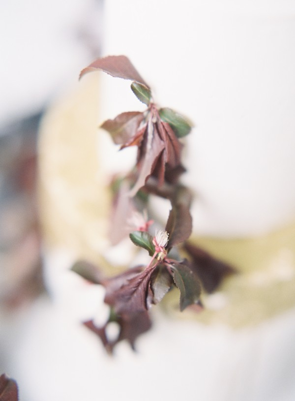 Red leaves on white wedding cake