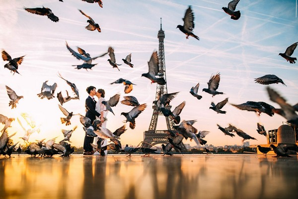 Bride and groom kissing by Eiffel Tower with birds flying around them - Picture by Albert Palmer Photography