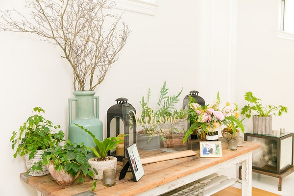 Pots of plants on wooden table at wedding