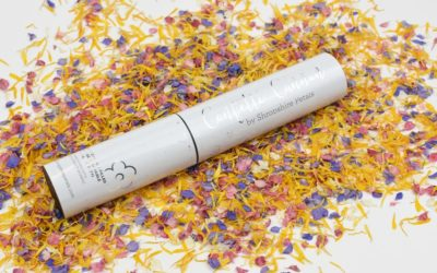 New Confetti Cannons from Shropshire Petals