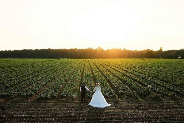 Bride and groom holding hands in front of crop field as sun sets - Picture by Faye Amare Photography