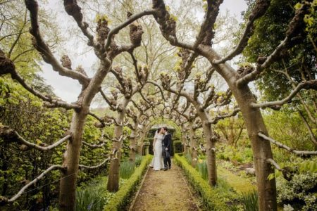 Bride and groom kissing at end of walkway lined with tree branches - Picture by Ian Baker Photography