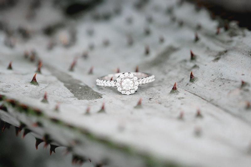 Wedding ring on cactus leaf