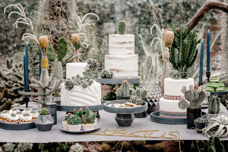 Wedding cakes and desserts on table with cactuses