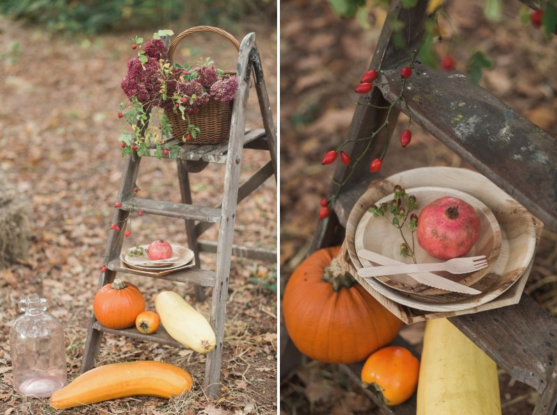 Ladder with flowers and vegetables