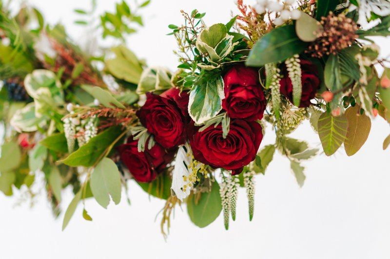Red roses and foliage