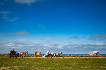 Bride and groom riding on horse and cart by the sea - Picture by Eilidh Robertson Photography
