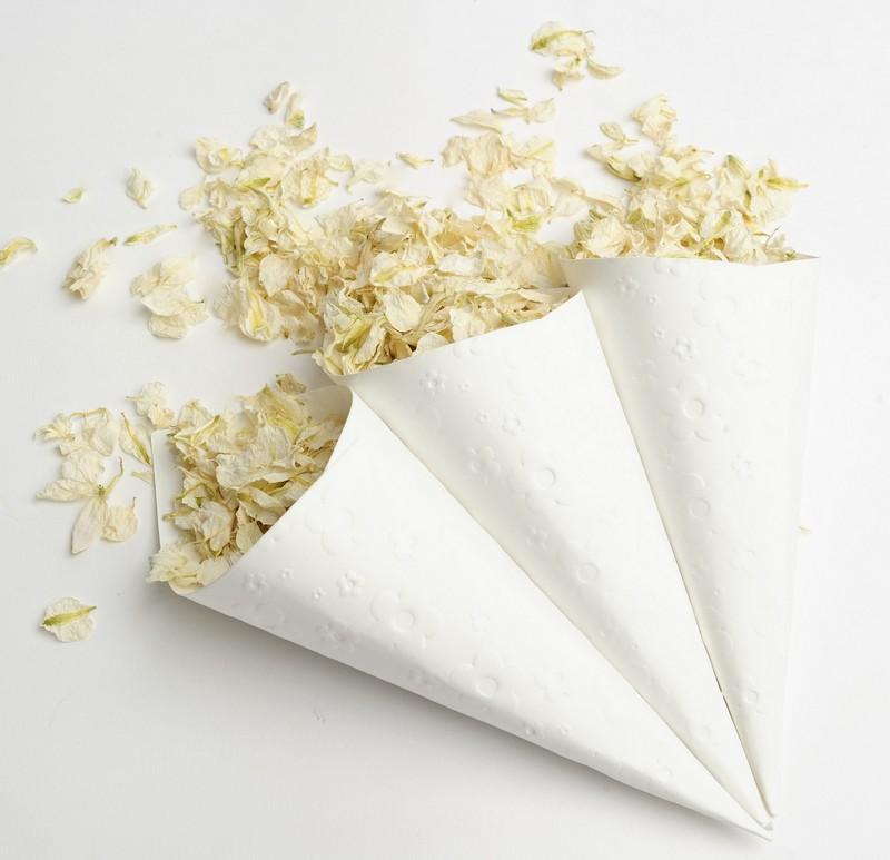 Confetti in Embossed White Confetti Cones