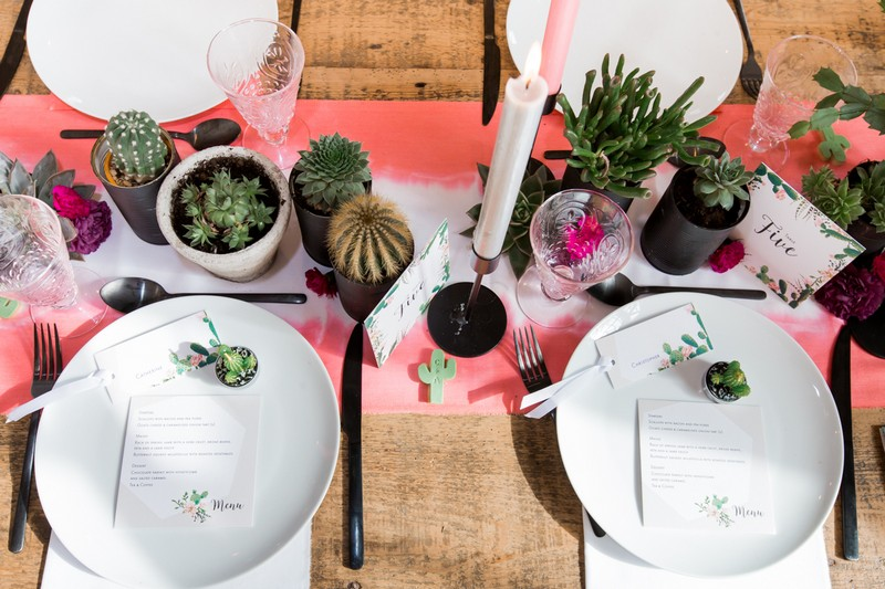 Small pots of cacti and succulents on wedding table
