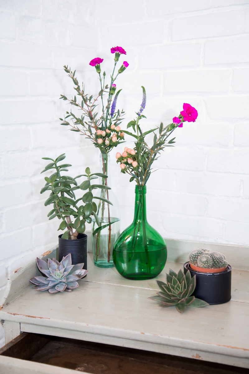 Vases of flowers, succulents and potted cacti