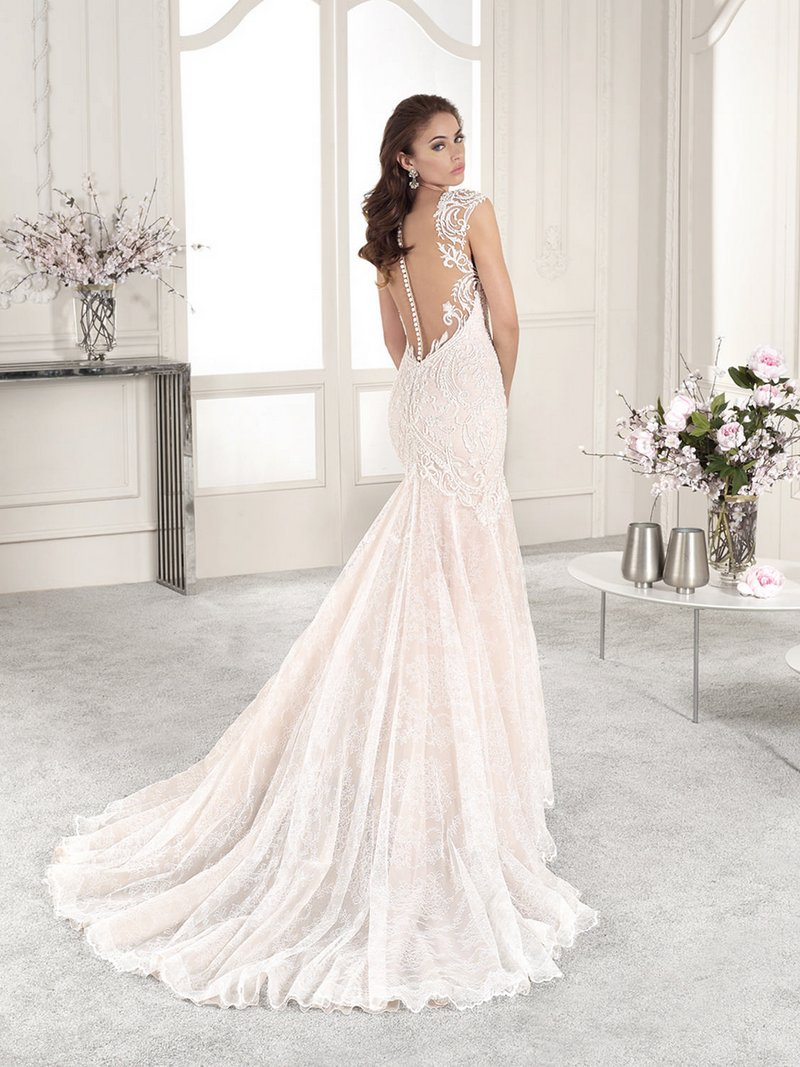 Back of 814 Wedding Dress from the Demetrios Starlight 2019 Bridal Collection
