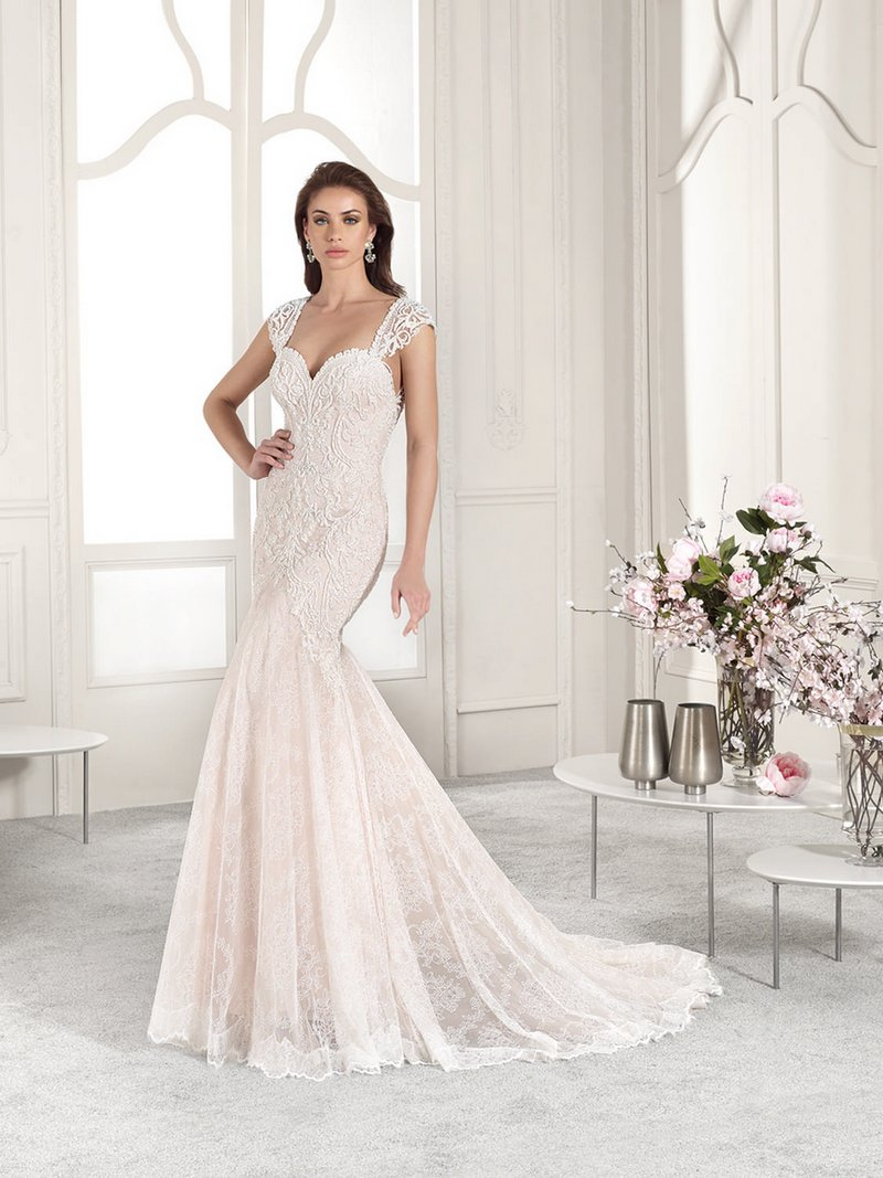 814 Wedding Dress from the Demetrios Starlight 2019 Bridal Collection
