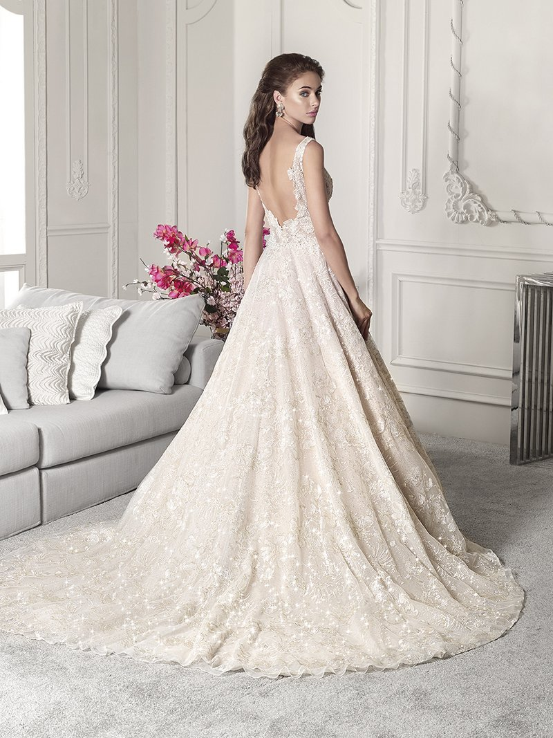 Back of 828 Wedding Dress from the Demetrios Starlight 2019 Bridal Collection