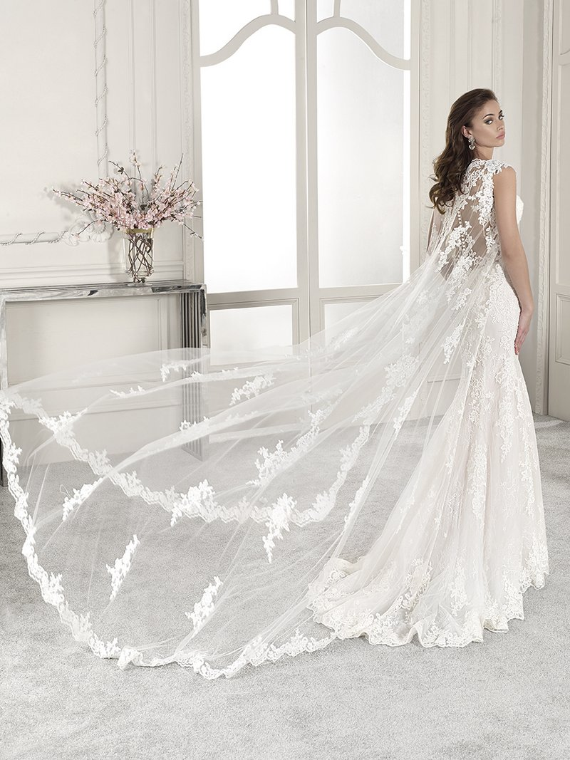 Back of 831 Wedding Dress with Cape from the Demetrios Starlight 2019 Bridal Collection
