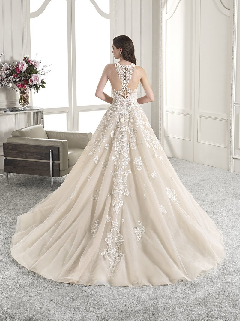 Back of 842 Wedding Dress from the Demetrios Starlight 2019 Bridal Collection