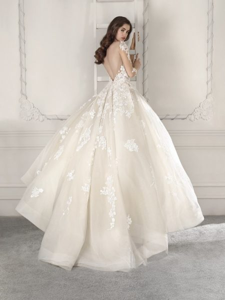 Back of 843 Wedding Dress from the Demetrios Starlight 2019 Bridal Collection