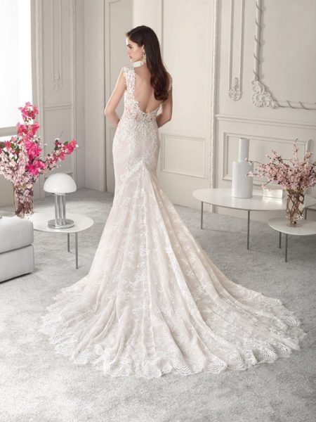 Back of 847 Wedding Dress from the Demetrios Starlight 2019 Bridal Collection