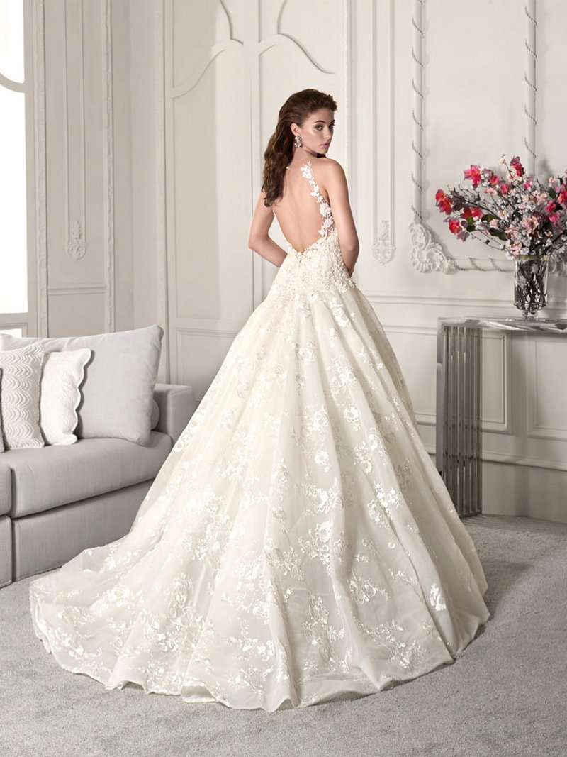 Back of 859 Wedding Dress from the Demetrios Starlight 2019 Bridal Collection