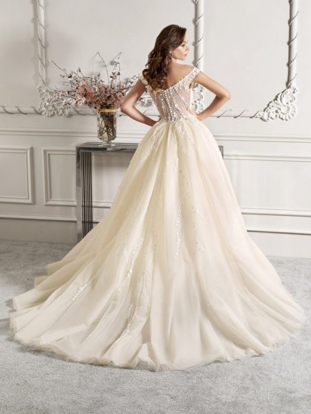 Back of 868 Wedding Dress with Train from the Demetrios Starlight 2019 Bridal Collection