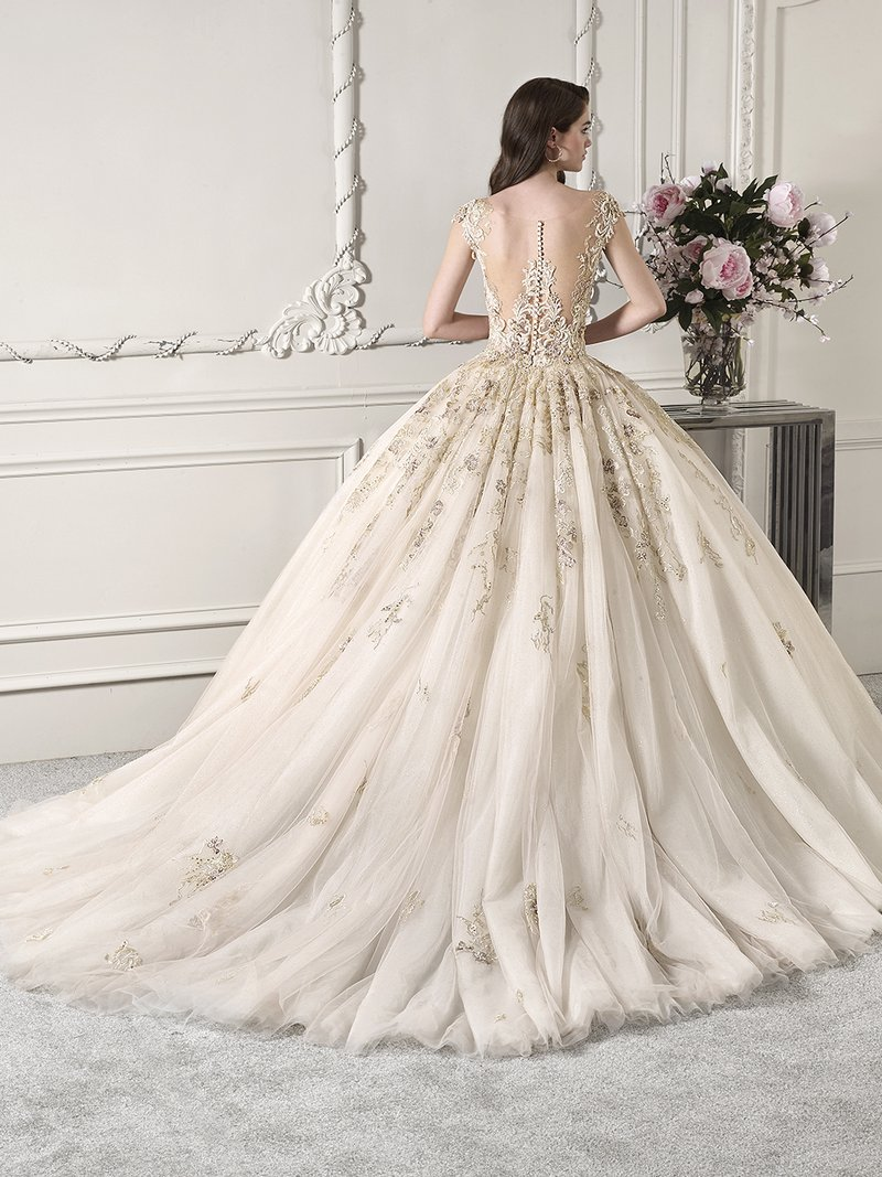 Back of 881 Wedding Dress from the Demetrios Starlight 2019 Bridal Collection