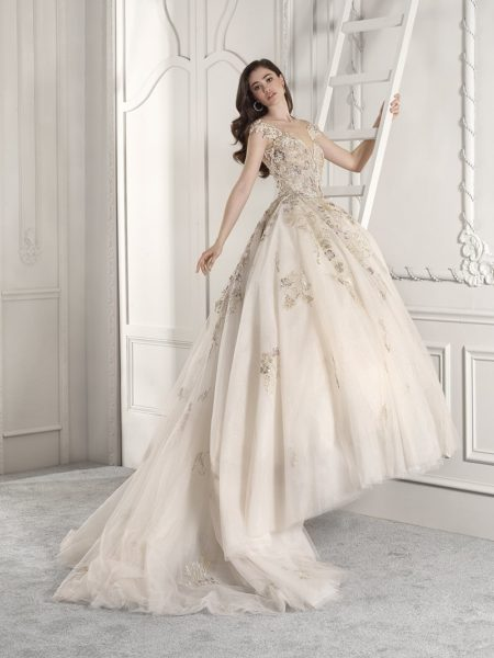 881 Wedding Dress from the Demetrios Starlight 2019 Bridal Collection