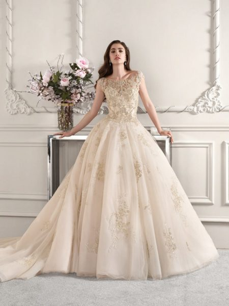 884 Wedding Dress from the Demetrios Starlight 2019 Bridal Collection