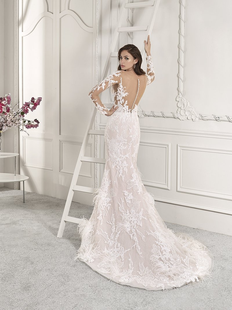Back of 885 Wedding Dress from the Demetrios Starlight 2019 Bridal Collection